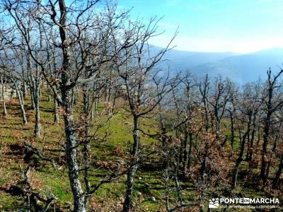 La Cachiporrilla - Altos del Hontanar; paseos por madrid; rutas alrededor de madrid;la palma la isla